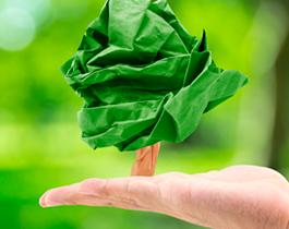Photo of Como otimizar a impressão para preservar o meio ambiente