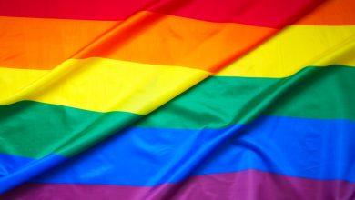 Photo of Dia Internacional do Orgulho LGBTQ+ Eventos, artes e artistas para se inspirar