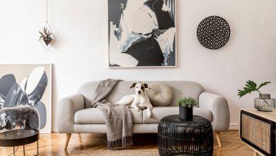 Photo of Quadro com moldura ou tela decorativa: qual é a melhor opção?